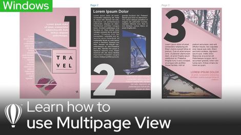 Multiple View Windows