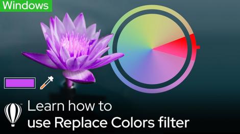 Replace Color Windows
